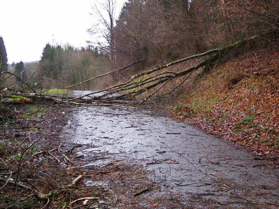 Viele Wege – wie hier in Schwörstadt – waren blockiert.    Foto: Helmut Kohler