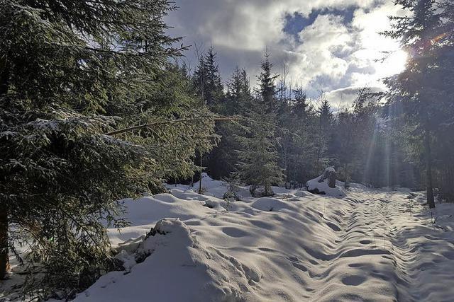 Trüber Dezember mit etwas Schnee