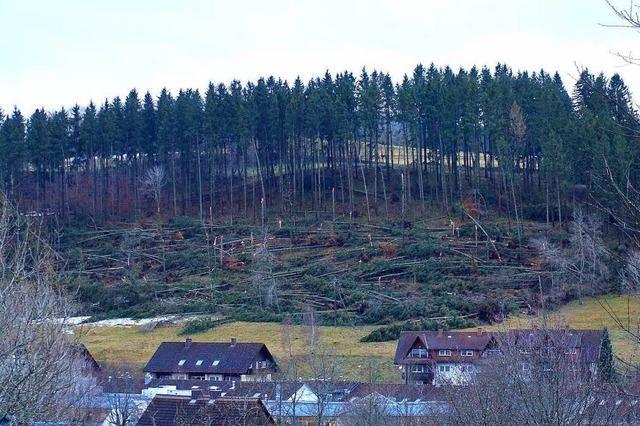Sturm richtet hohe Schäden im Schwarzwald an – jetzt Hochwasser-Alarm