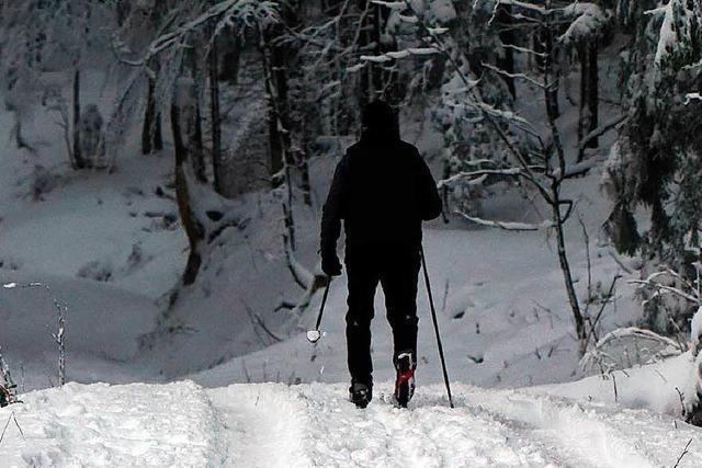 Nationalpark räumt Loipen vom Sturmholz – Wintersport aber nur stark eingeschränkt möglich