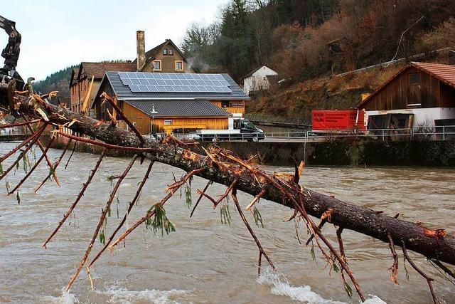 Rettungskräfte in Zell müssen Tanne aus Fluten bergen