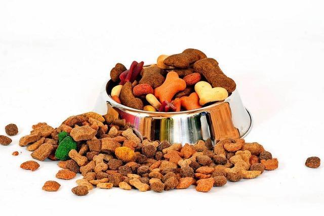 Wie soll man Katzen und Hunde richtig füttern?
