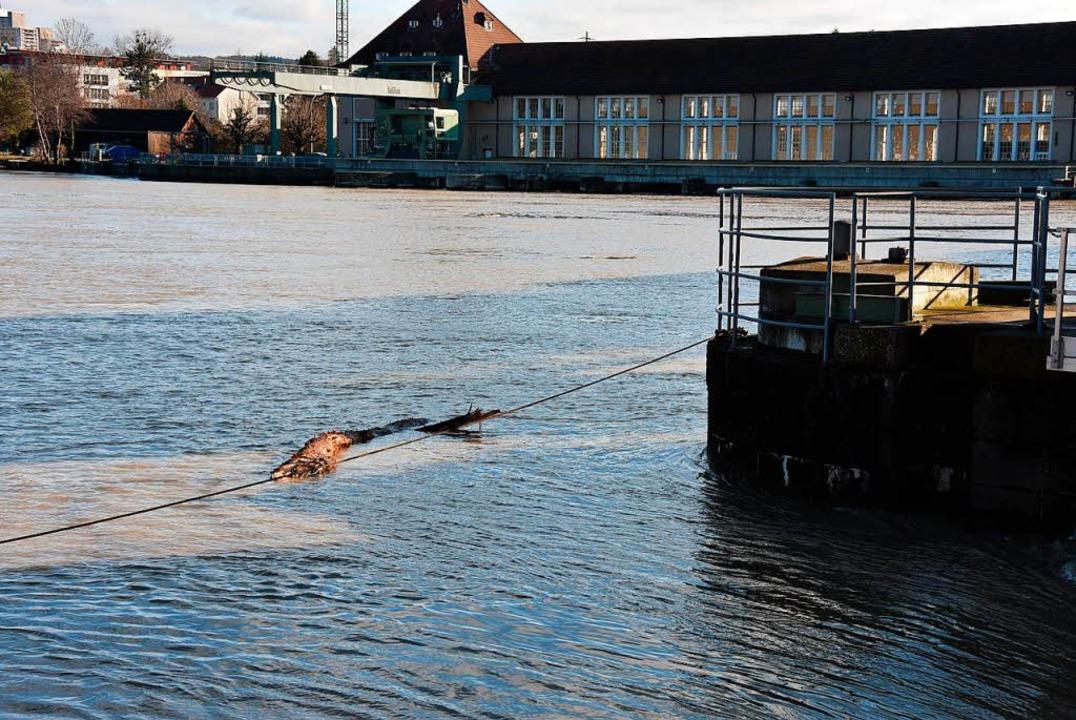 Hochwasser am Stauwehr    Foto: Heinz u. Monika Vollmar