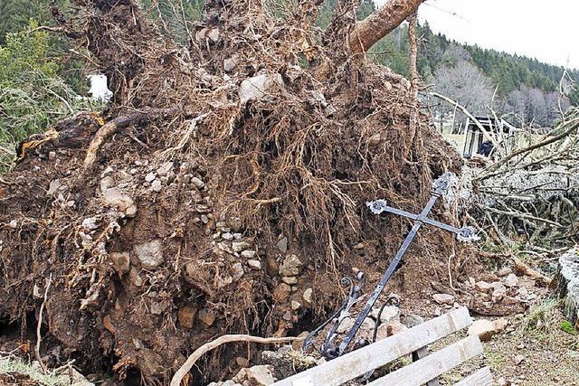 Sturmschäden in Häusern