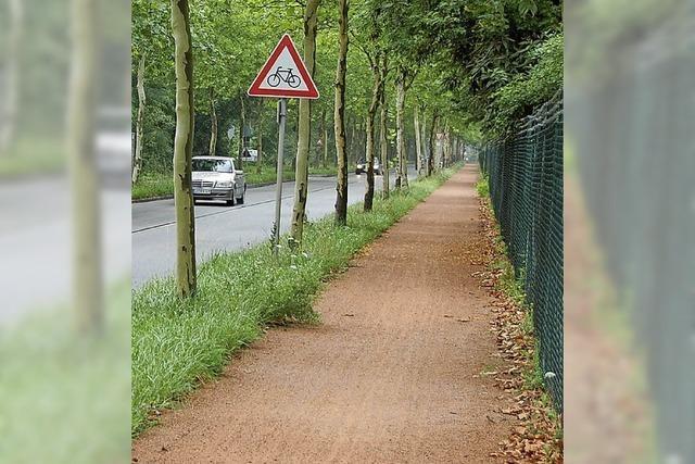 IG Velo fordert Schutzstreifen an Alte Straße