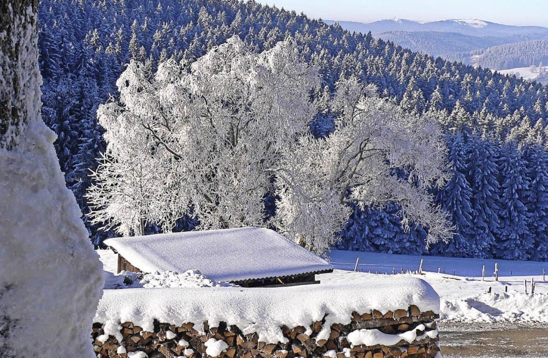 Schonster Winter Bis Der Orkan Kam Titisee Neustadt Badische Zeitung