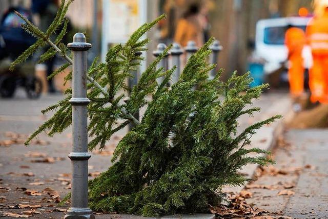 Video: Weihnachtsbaum macht wunderschönen Abflug