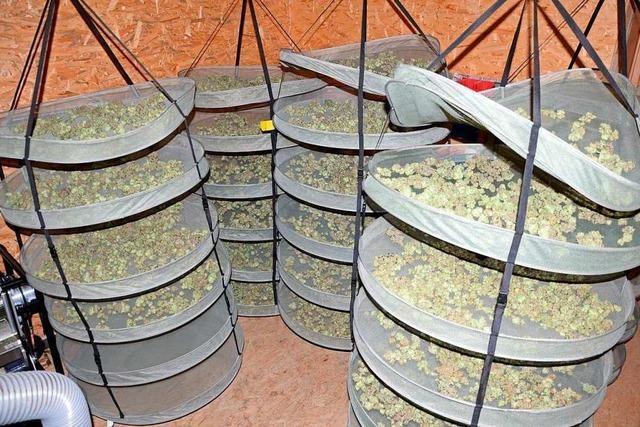 Polizei hebt Anlage für Hanf-Anbau in Liestal aus