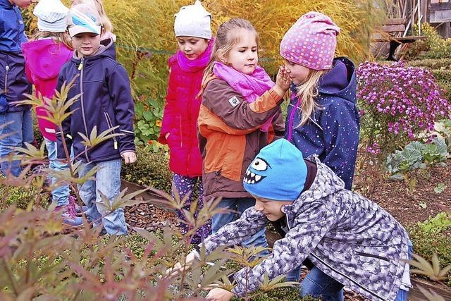 Kinder erleben spielerisch die Natur