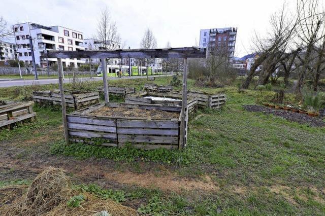 Autofrei-Verein will Grünfläche retten