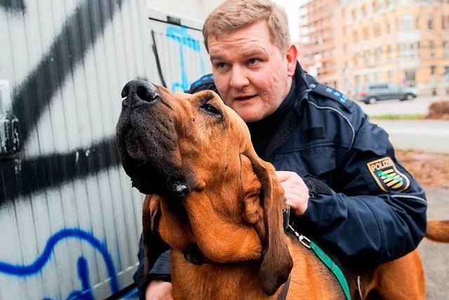 Polizeihunde können DNA riechen
