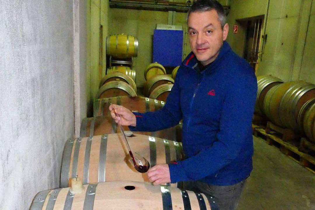 Ingo Ehret im Weinkeller der Winzergen...des Weins ist er schon sehr zufrieden.  | Foto: Elena Bischoff