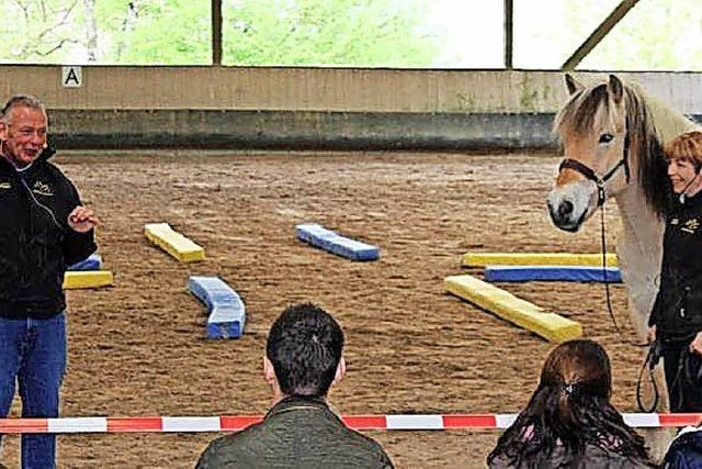 Engagement ums Pferd
