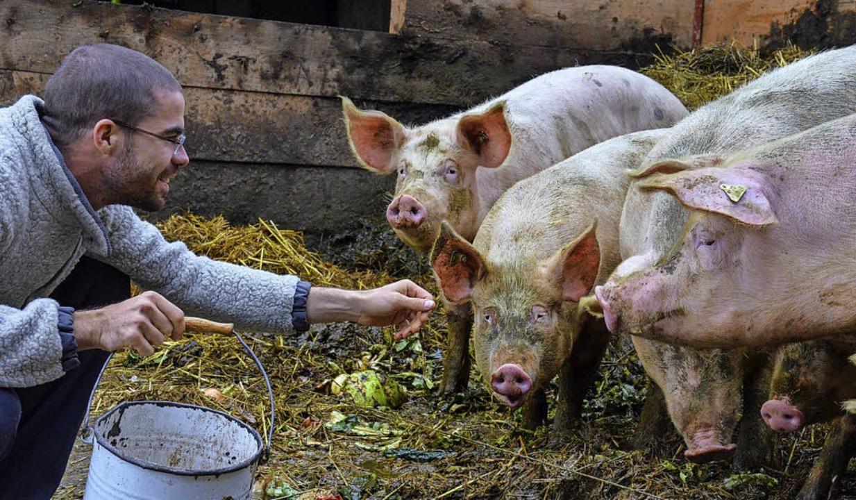 Thomas Rippel mit den Schweinen des Hofs.  | Foto: Gabriele Hennicke