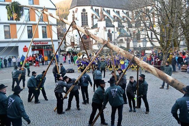 Fasnachtsauftakt in Schönau mit Narrenbaumstellen
