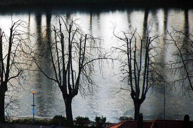 Polizei fand belastende Festplatte von Tatverdächtigem im Staufener Stadtsee