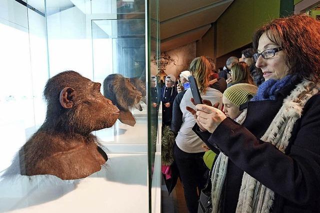 MEINE WOCHE: Ins Konzert und ins Museum – am Tag und in der Nacht