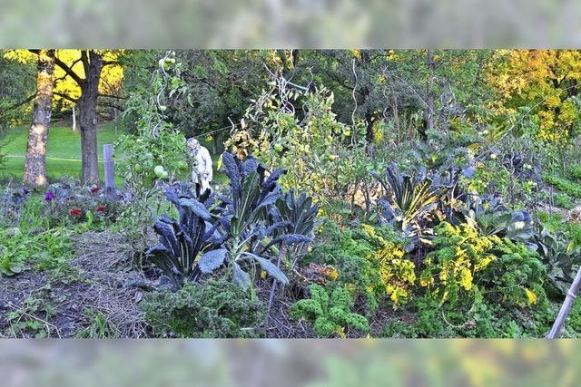 Ein Garten von Bürgern für Bürger