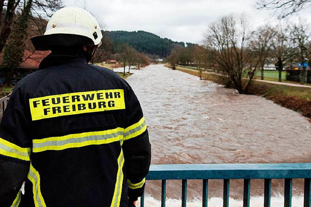 Gut voll: Die Dreisam an der Freiburger  Sandfangbrücke am 4. Januar  | Foto: dpa