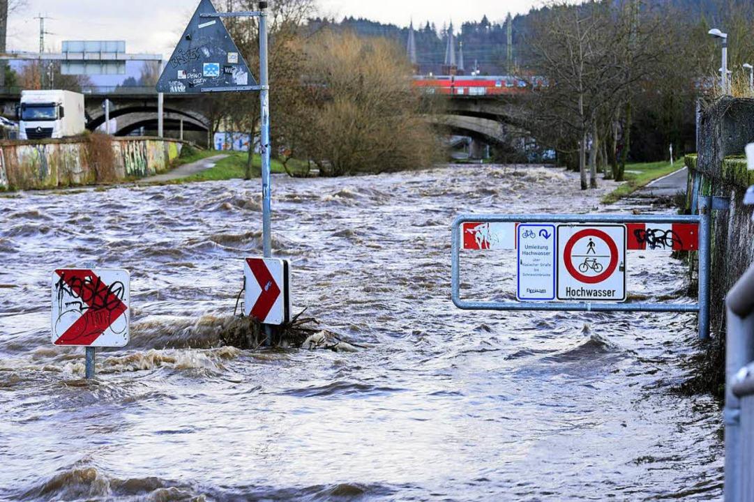 Der Dreisamuferradweg war Anfang Januar überschwemmt.  | Foto: Thomas Kunz