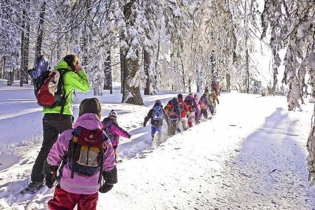 Auf breiten Sohlen durch den Schnee