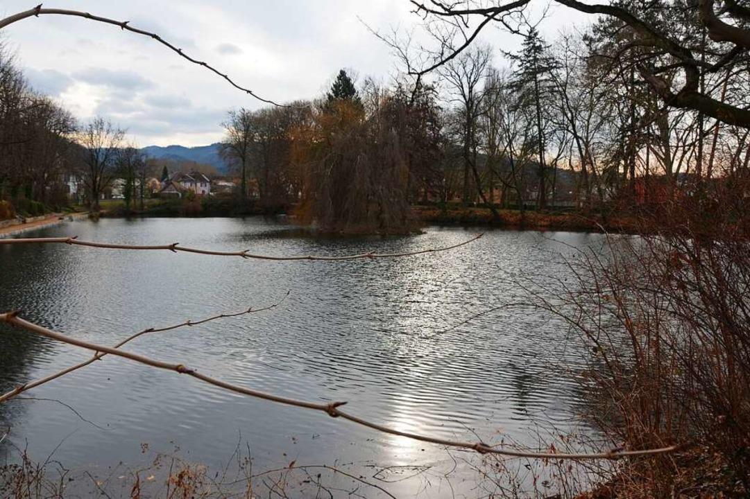 Der Stadtsee in Staufen  | Foto: Sarah Beha
