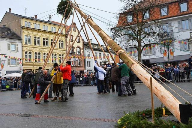 Fotos: Narrenbaumstellen auf dem Lörracher Marktplatz