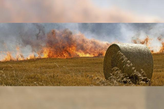 Einsatzreiches Jahr für Müllheimer Feuerwehr