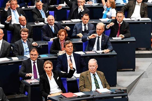 AfD übernimmt Vorsitz im Haushaltsausschuss des Bundestages