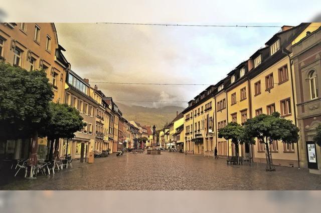 Rasanter Anstieg der Grundstückspreise um 20 Prozent in und um Waldkirch