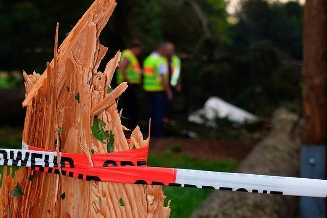 15-Jähriger von Baum erschlagen: Staatsanwaltschaft sieht keine Schuld bei Betreuern