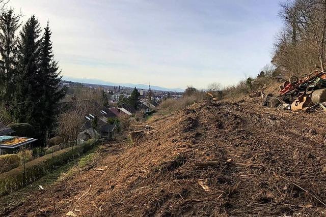 Baufahrzeuge rollen am Altenberg an