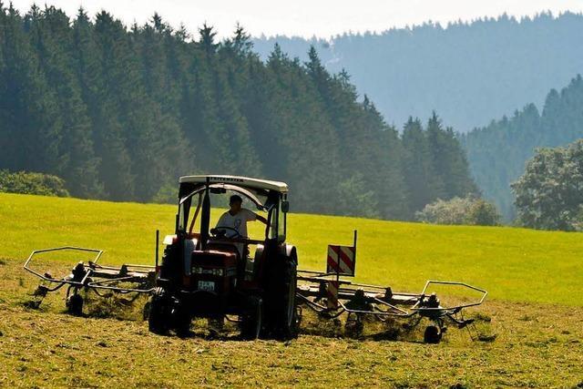 Prozess um toten Erntehelfer: Landwirt beteuert seine Unschuld