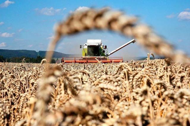 Darum sollte die Politik das Agrar-Monopoly unterbinden