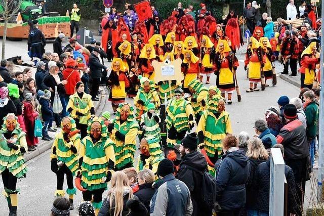 Fotos: Konfettiregen beim Fasnetsumzug in Gundelfingen