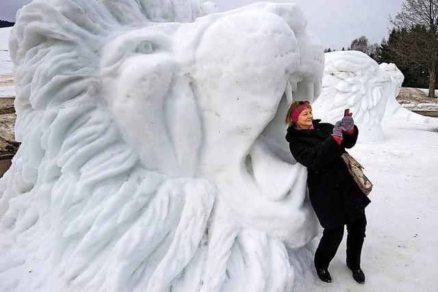 Schnee führt zu Chaos in Teheran