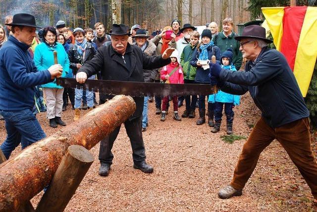 Holzversteigerung in Hauingen mit Musik und Wettsägen