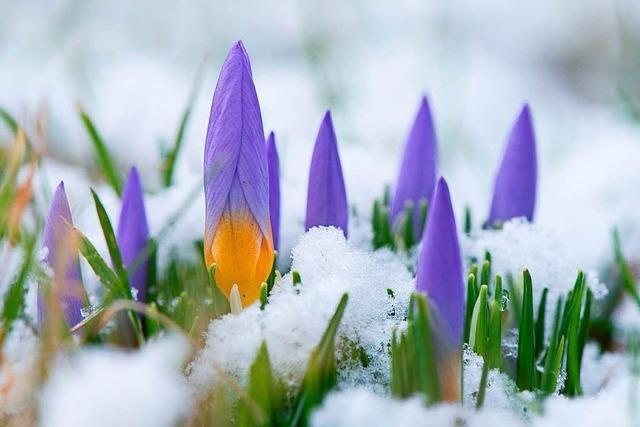 Winterwetter kehrt zurück – Wochenstart mild und nass