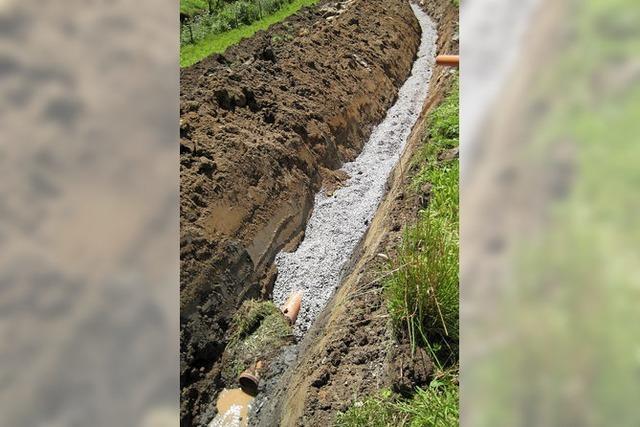 Mehr Gewässerschutz im Ortenaukreis