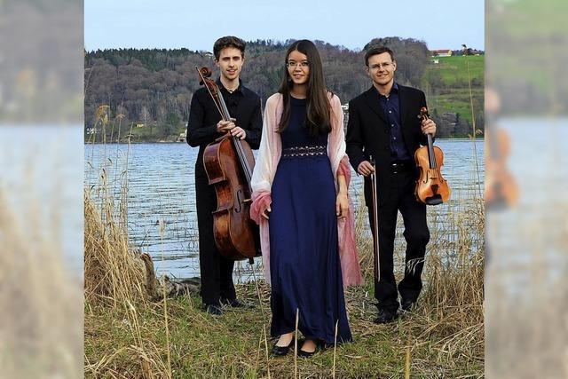 Trio mit Klavier, Geige und Cello