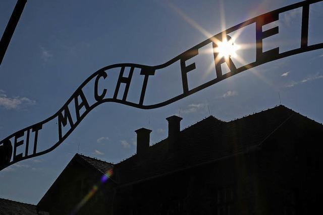 Kritik an Holocaust-Gesetz