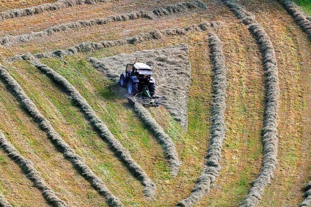 Verfahren gegen Landwirt nach Tod eines Erntehelfers eingestellt