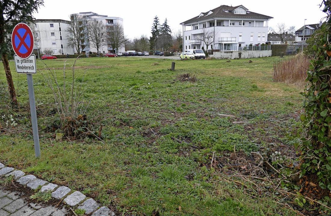 Auf diesem Gelände zwischen den Falken...fen 24 bezahlbare Wohnungen entstehen.  | Foto: Hans-Peter Müller