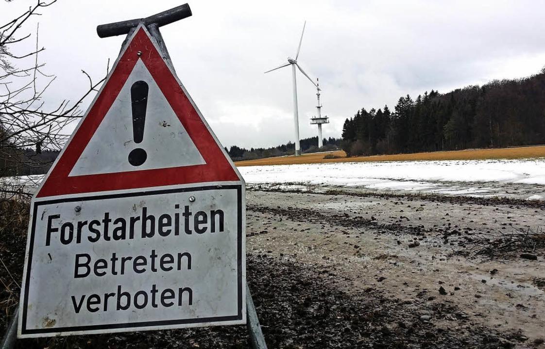Von wegen Forstarbeiten: In den kommen...en wird auf der Länge nicht abgeholzt.  | Foto: Günter Vollmer