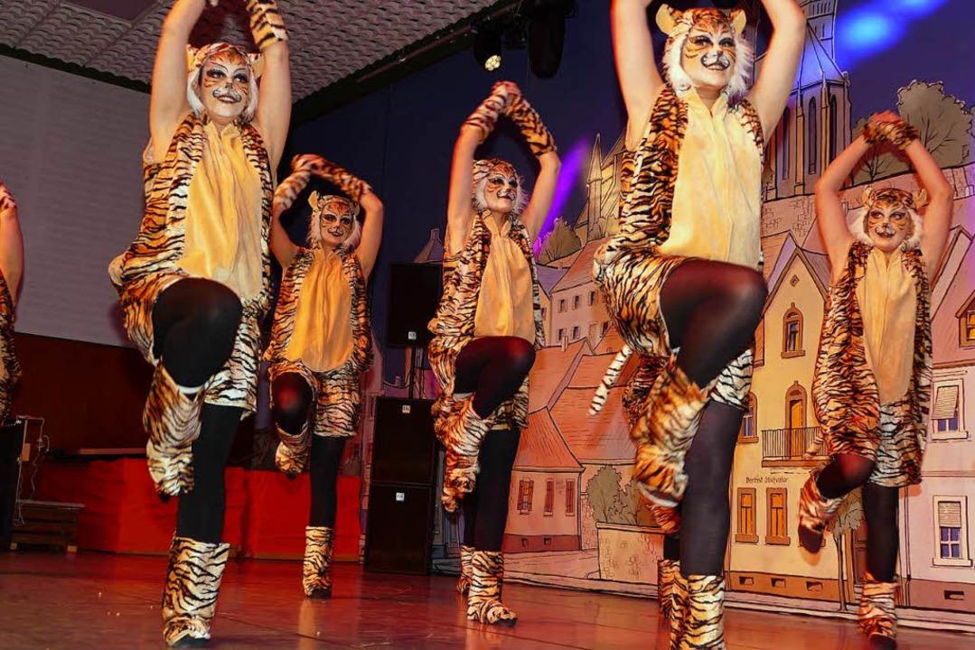 Als wilde Katzen wirbelten die Tänzeri...es Schwimmsportvereins über die Bühne.  | Foto: Frank Kreutner
