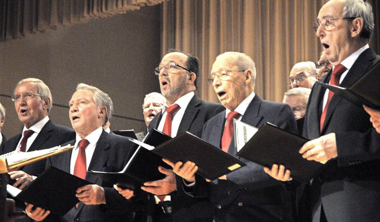 Der Männerchor des Gesangvereins Haltingen besang den Zauber einer Mondnacht.  | Foto: Regine Ounas-Kräusel