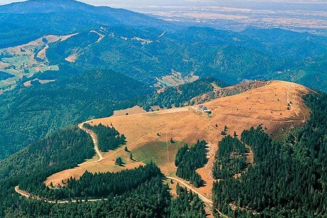 Wie sich das Biosphärengebiet Schwarzwald entwickelt