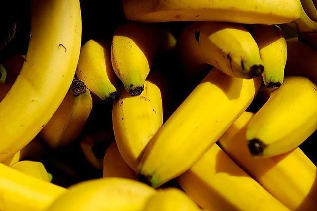 Der hohe Preis von billigen Bananen