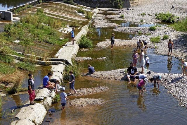 Landesgartenschau: OB bedauert grüne Enthaltung