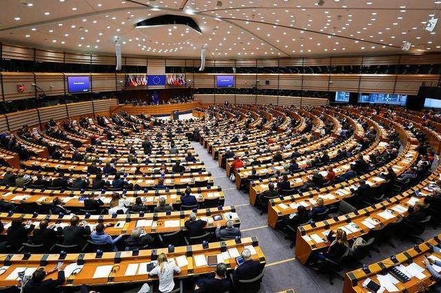 EU-Parlament stimmt gegen Wahlreform